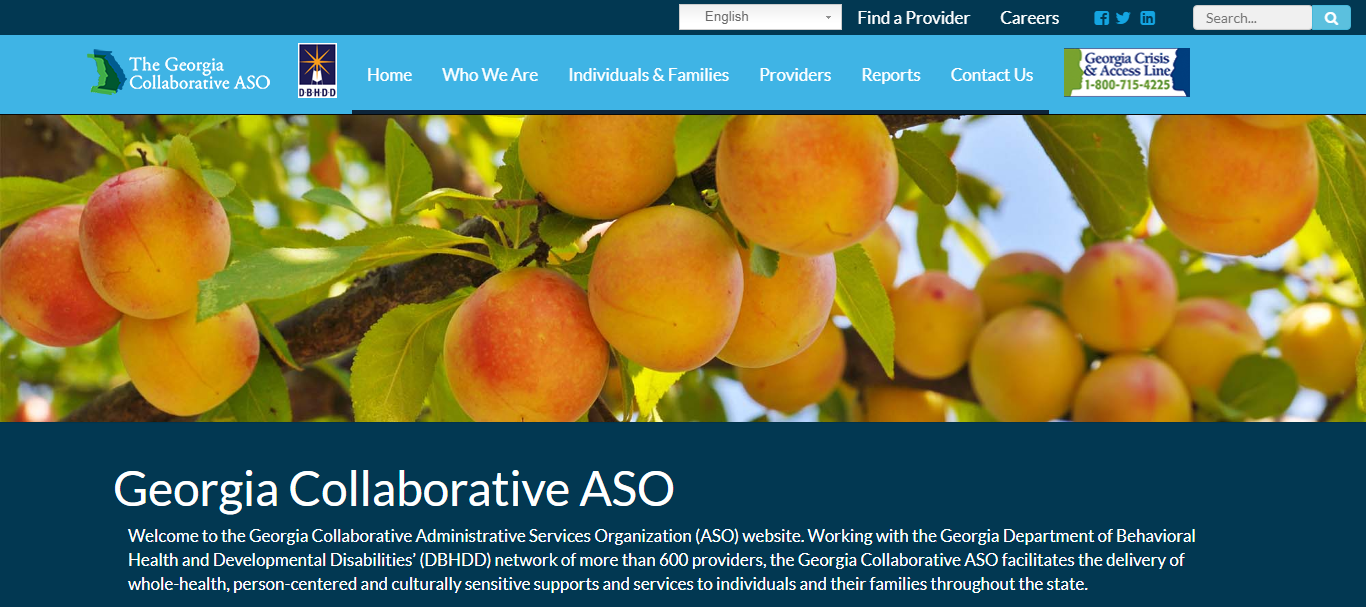 Georgia Collaborative ASO Website